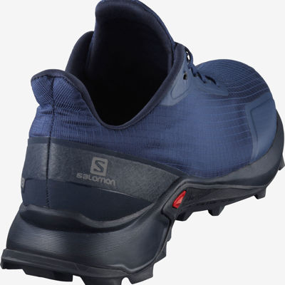 Buty Salomon Alphacross 407982